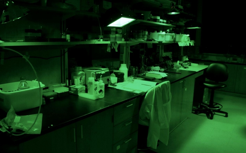 Image of the lab